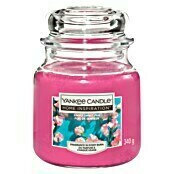 Yankee Candle Home Inspirations Duftkerze (Im Glas, Simply Sweet Pea, Medium)