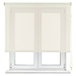 Viewtex Estor enrollable Screen 5% (An x Al: 90 x 250 cm, Beige/Blanco, Traslúcido)(An x Al: 90 x 250 cm, Beige/Blanco, Traslúcido)