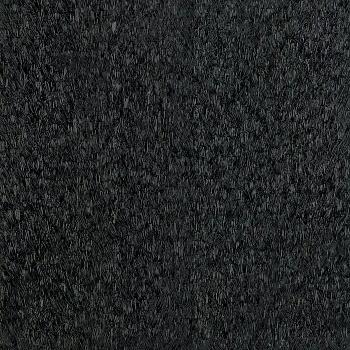 Classis Carpets Infinity Grass Rasenteppich World of Colors (200 x 133 cm, Black Beauty, Ohne Noppen) -
