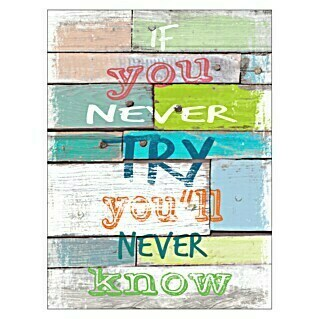 ProArt Type Hype Decopanel (If you never try ..., 30 x 40 cm)(If you never try ..., 30 x 40 cm)