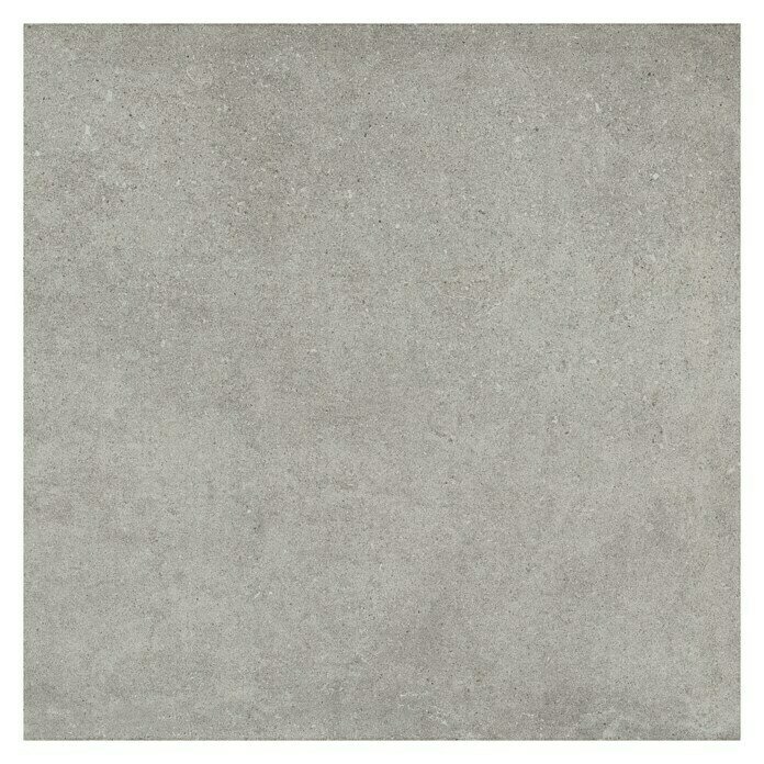 Feinsteinzeugfliese Click and Go Portland Grey (60 x 60 cm, Grau, Glasiert) -