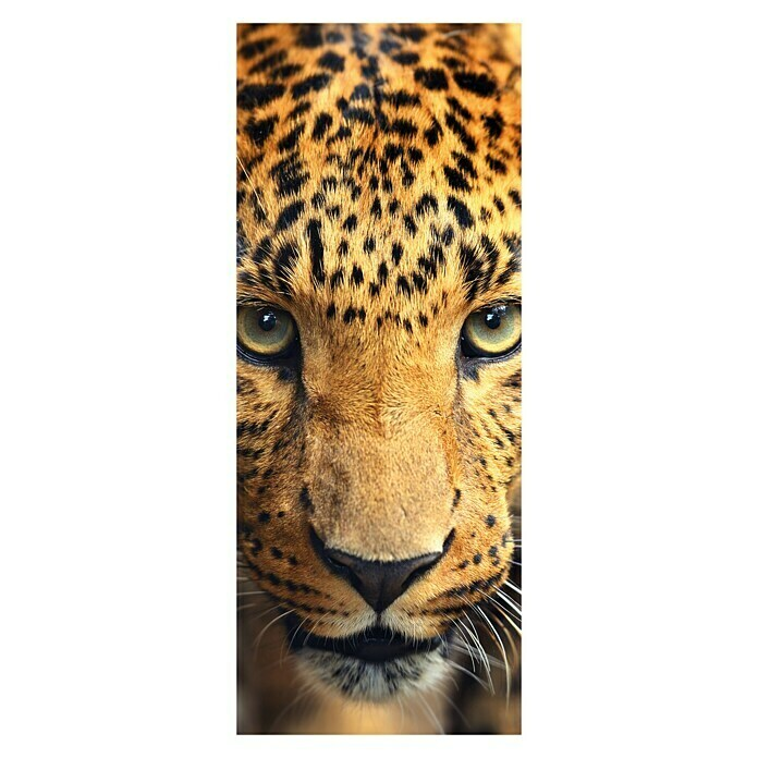 SanDesign Alu-Verbundplatte King of the Jungle (100 x 250 cm)