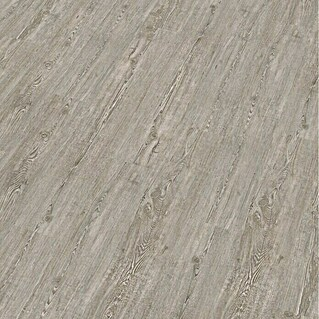 Decolife Vinylboden Winter Pine (1.220 x 185 x 10,5 mm, Landhausdiele)(1.220 x 185 x 10,5 mm, Landhausdiele)