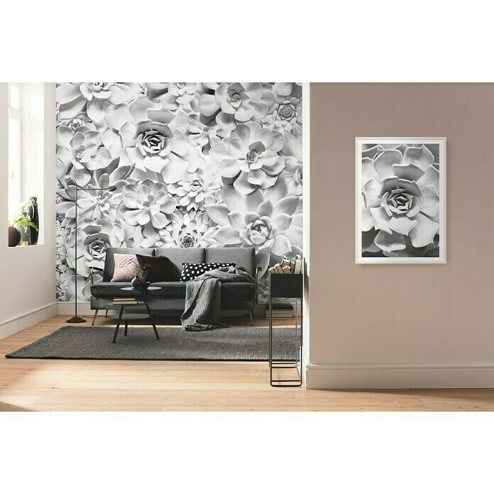 Komar Pure Fototapete Shades Black and White (4-tlg., 400 x 250 cm, Vlies)