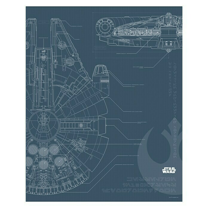 Komar Star Wars Wandbild Blueprint Falcon (40 x 50 cm, Vlies)