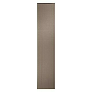 Expo Ambiente Flächenvorhang Basic (Taupe, 100 % Polyester, B x H: 60 x 300 cm)(Taupe, 100 % Polyester, B x H: 60 x 300 cm)