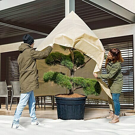 Windhager Winterschutzvlies Superprotect (L x B: 2,4 x 2 m, Beige, 100 g/m²)