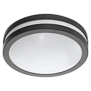 Eglo Led-buitenlamp Locana-C (Warm wit, A++ tot A)(Warm wit, A++ tot A)
